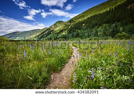 a hiking trail in the mountains - stock photo