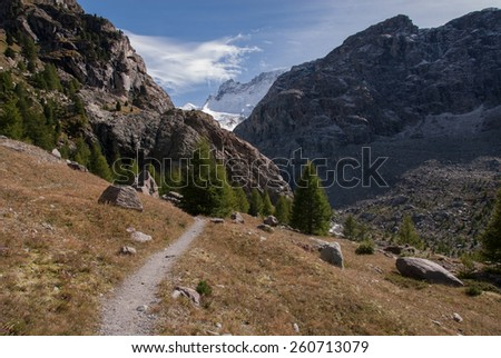 A hiking trail in the Swiss Alps