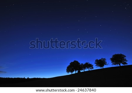 A hillside at dawn, with a line of silhouetted trees under a deep blue, clear starry sky.
