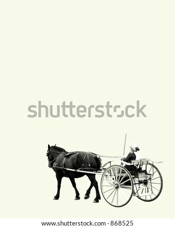 a horse drawn carriage - stock photo