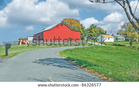 A horse grazes by the roadway at a farm in Kentucky, USA in autumn. - stock photo