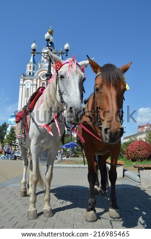 a horse in the town square
