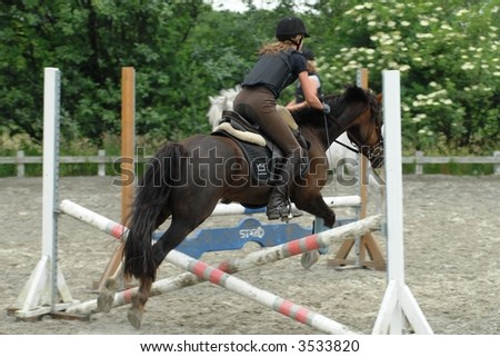 A horse jumping a barrier - stock photo