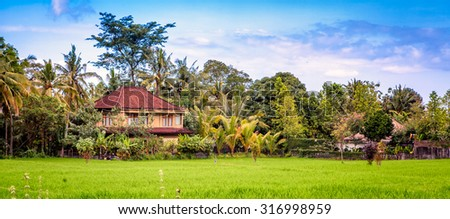 a house in a rice field and jungle in the background, near Ubud in Bali