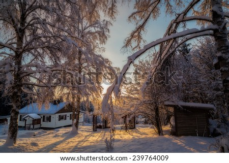 a house in a snow landscape with sunlight trough the branches with snow