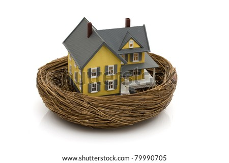 A house sitting in an empty nest isolated on white, Your house is an investment - stock photo