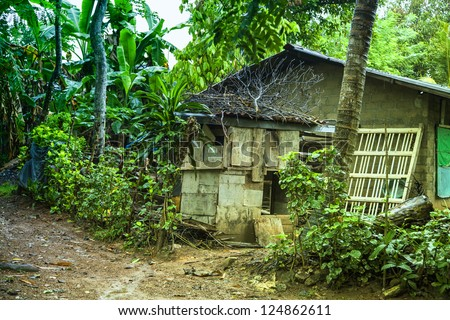 A house with stony walls in luminous green of the jungle of the tropical island Sri Lanka in the Indian Ocean - stock photo