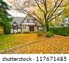 A house with the front yard covered with leafs - stock photo