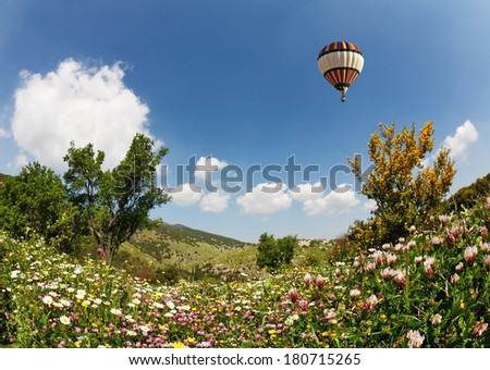 A huge bright balloon flying over scenic hills, blooming buttercups