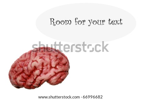 a human brain isolated on white with lots of room for your text or images or easily cropped out and used in other images - stock photo