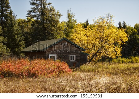 A hunting cabin in the woods surrounded by fall colored trees