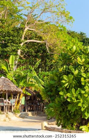 a hut and tropical vegetation on a thai tropical island - stock photo