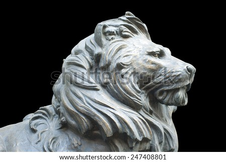 A isolated lion's head on black background - stock photo