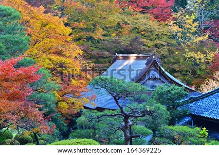 A Japanese Buddhist temple surrounded by colorful fall foliage in autumn. - stock photo