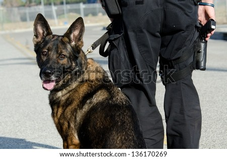 a k9 officer with his partner during their patrol shift - stock photo