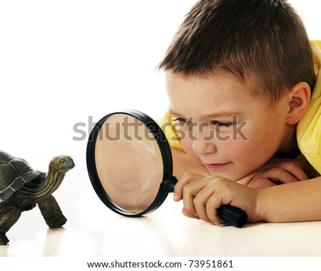 A kindergarten boy studying a turtle through a magnifying glass. - stock photo
