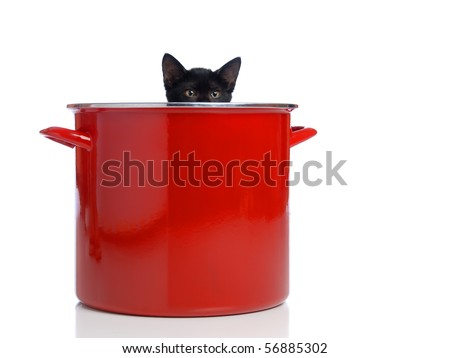 A kitten peeking out of a large red pot. - stock photo