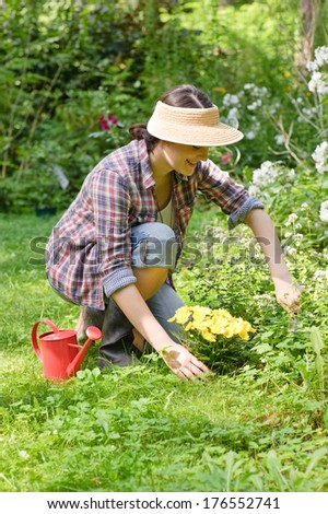 A lady working in a flower garden with yellow and white flowers.
