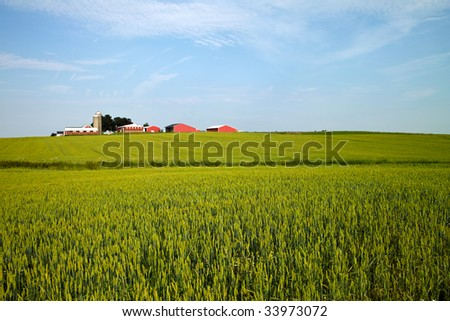 A landscape of a typical midwestern American farm on a sunny June day - stock photo