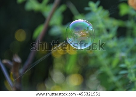 A large bubble hanging on broken cobweb outdoors