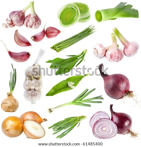 A large collection set of onion and garlic  isolated over white background - stock photo