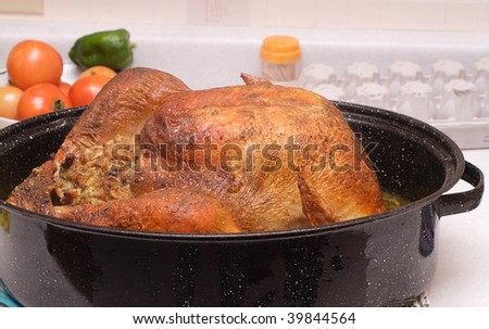 A large cooked turkey sitting in a roaster, on a kitchen counter - stock photo