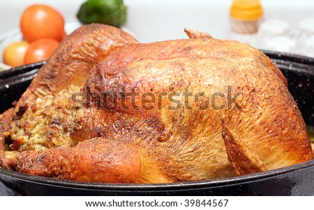 A large cooked turkey sitting in a roaster, on a kitchen counter