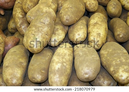 A large group of fresh potatoes - stock photo