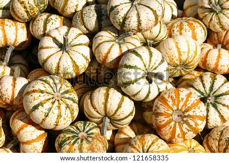 A large group of green and white gourds