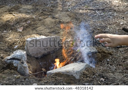 Large man adding fuel fire barbecue stock photo royalty free a large man adding fuel to the fire for a barbecue publicscrutiny Images