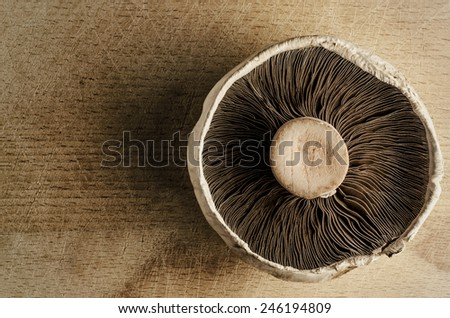 A large, open cap mushroom on an old, scratched and cut wooden chopping board, shot from above to reveal underside texture.  Vintage effect. - stock photo