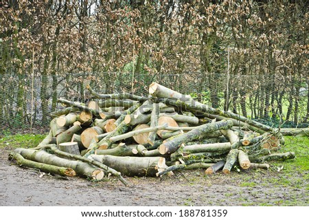 A large pile of logs in a garden - stock photo
