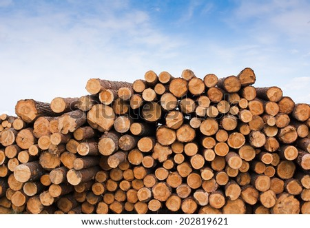 a large pile of timbers - stock photo