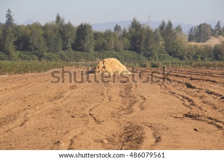 A large pile of woodchips will be used to protect crops during the cold winter months/Preparing Crops for Winter/A pile of woodchips will be used to protect the crops during the cold winter months.