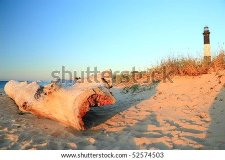 A large weathered driftwood log on the beach on Long Island Sound with dunes and the Fire Island Lighthouse behind - stock photo