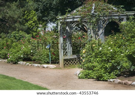 A large wooden arbor in a rose garden. - stock photo