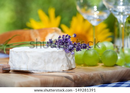 A lavender twig on a camembert cheese - stock photo