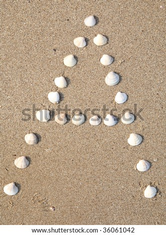 A letter symbol created from shells on a beach sand