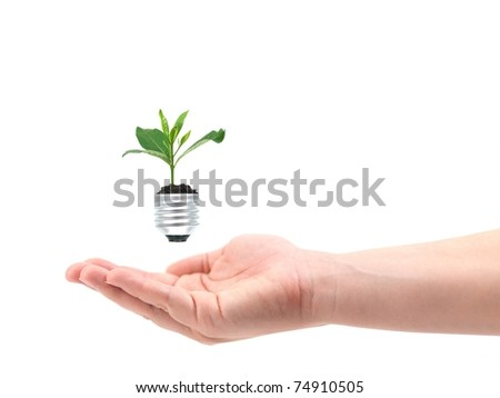 A light bulb isolated against a white background