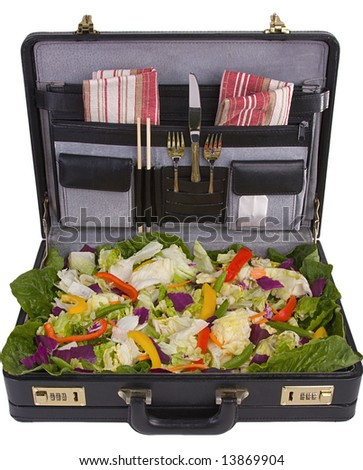 A Light Business Lunch In A Briefcase - stock photo