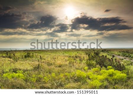 A light fog, heavy dew and hazy sky fills this prairie tall grass scene as the warm sunrise highlights the dew on a mild summer morning in the Kansas Tallgrass Prairie Preserve. - stock photo