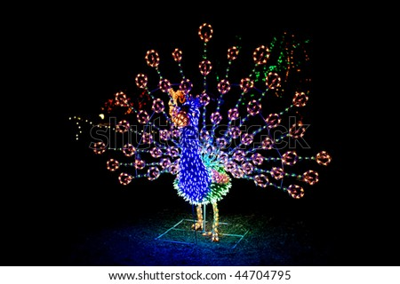 A lighted Christmas peacock shows its vibrant colors and beautiful details throughout the string of lighted bulbs.. - stock photo