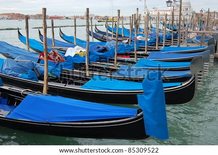 A line of gondolas tied up at Piazza San Marco, Venice