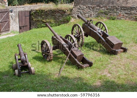 A line of historical cannons on grass.