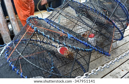 A line of prawn pots ready to release into the ocean. - stock photo