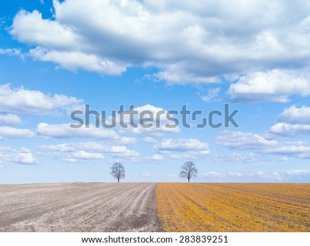A line running trough the landscape with two trees on the horizon with a blue sky and white clouds and yellow and grey colors on the field - stock photo