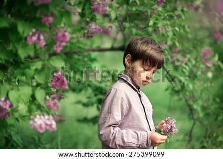 a little boy in a shirt walking in the garden with cherry blossoms - stock photo