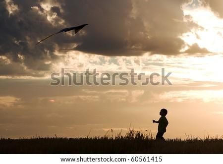 A little boy makes a successful kite flight. - stock photo