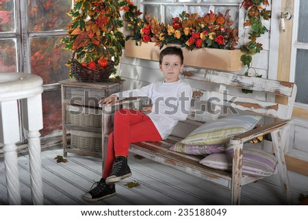 a little boy sits in a chair  in the garden in autumn - stock photo
