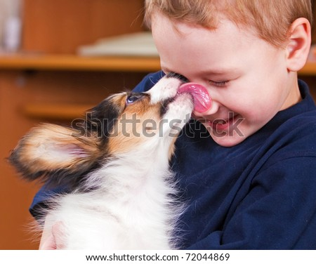 A little dog licking a boy's nose